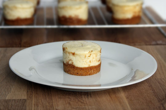 Tahitian Vanilla Cheesecake