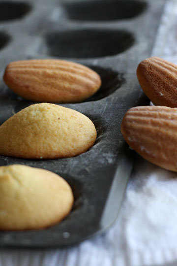 Lemon-Glazed Madeleine Recipes — Dishmaps