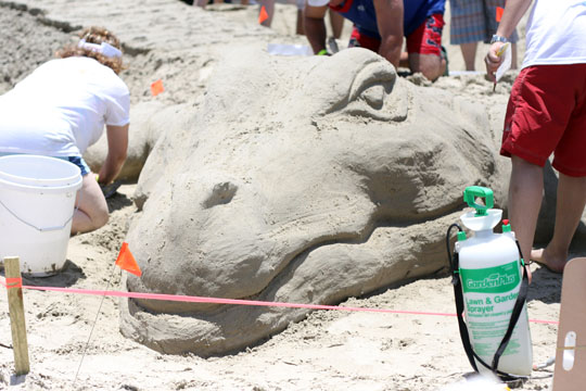 Sand Castle Competition